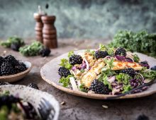 Blackberry Kale Salad with Fried Halloumi